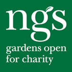ngs_logo green square