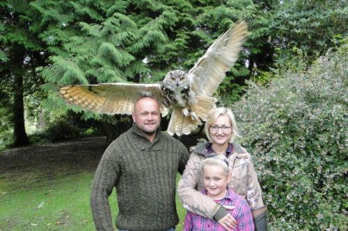 Merveilleux Fly An Owl