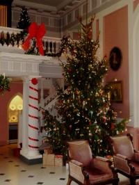 Xmas Tree in Great Hall