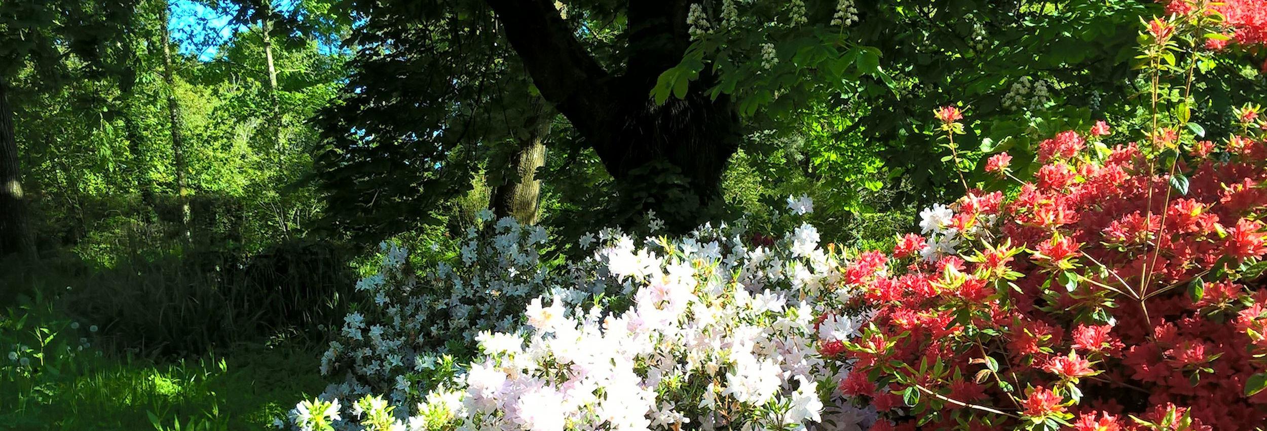 garden-banner-02