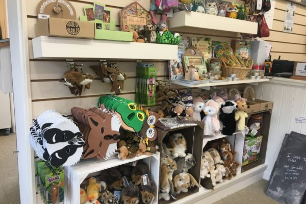 Picton Shop